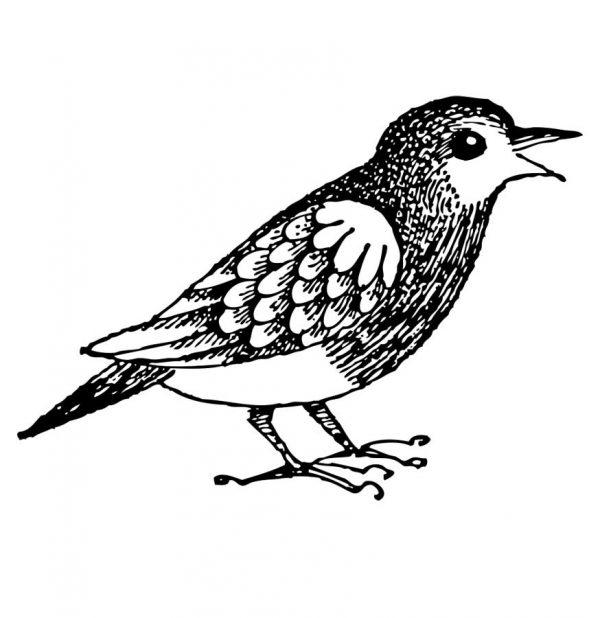 Stempel Vogel